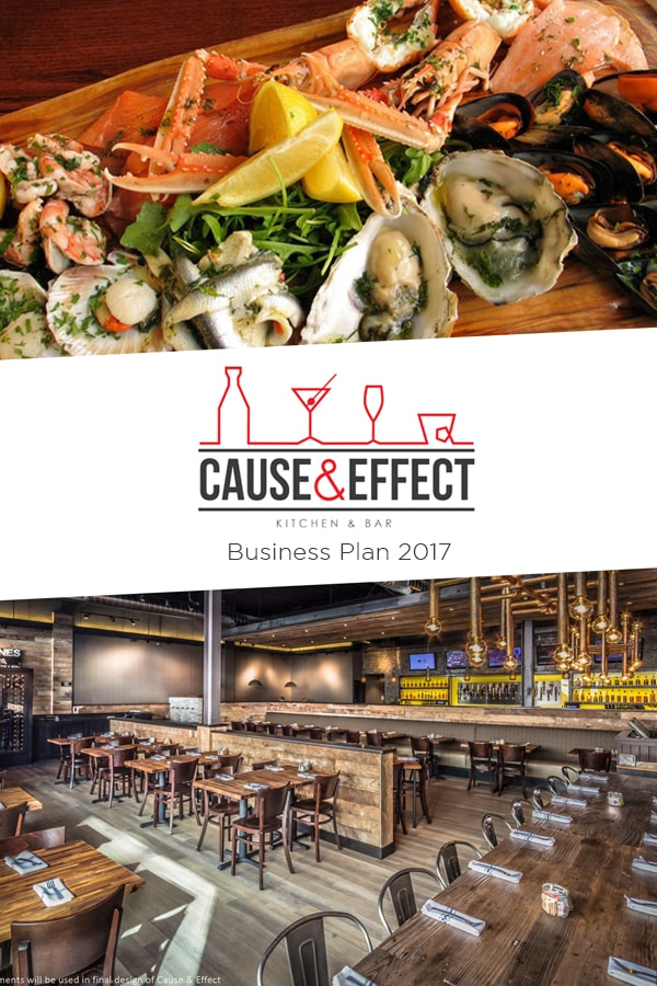 Cause & Effect - Business plan