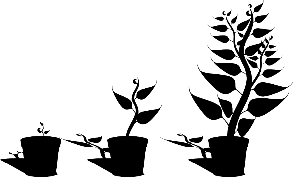 collaborative strategies - continuous growth
