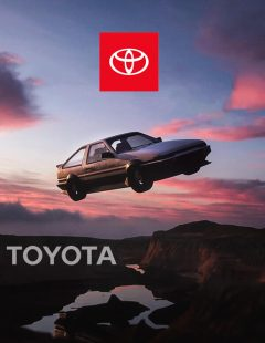 Toyota icon project