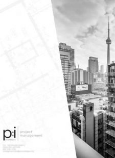 p2i strategies cover